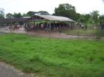 Angoram Market